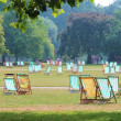 Striped deck chairs in park on grass — Stock Photo