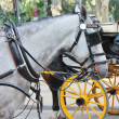 Horse and traditional tourist carriage in Sevilla — Stock Photo