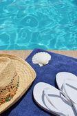 Pool Urlaub landschaftlich — Stockfoto