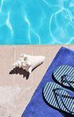Vid poolen semester semester natursköna — Stockfoto