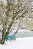 Banco debaixo de uma árvore na margem do rio durante uma nevasca — Foto Stock