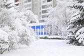 árvores em uma fresca neve fofa na frente da casa — Foto Stock