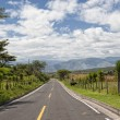Road in the Andes in Ecuador — Stock Photo
