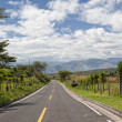 Road in the Andes in Ecuador — Stock Photo #28137629