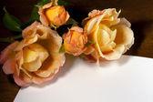 Gele rozen en ticket — Stockfoto