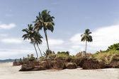 在一场暴风雨后的热带海滩 — 图库照片