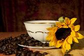 Cup met koffiebonen en zonnebloemen op een gekleurde achtergrond — Stockfoto