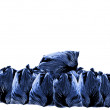 Trash bags — Stock Photo