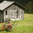 Agricultural implement and hut — Stock Photo #28331813