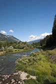 Overview of a river — Stock Photo