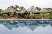 Piscina num parque tropical eu — Foto Stock