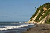 Tropikal plaj — Stok fotoğraf