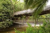 Ponte de madeira com telhado de palha — Foto Stock