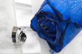 Růže a snubní prsteny — Stock fotografie