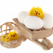 Easter eggs and chicken — Stock Photo