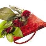 Valentine Day — Stock Photo #29308849