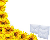 Greteeng card with yellow gerberas and envelopes — Stock Photo