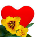 Red heart and Yellow tulip — Stock Photo