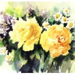 Orginal watercolor painting two lovely yillow roses — Stock Photo