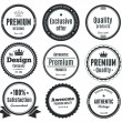 Nine Scalable Vintage Badges — Stock Vector