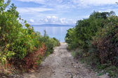 Gravel path to a secluded beach in Sithonia, Chalkidiki, Greece — Stock Photo