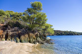 The forest meets the sea in Sithonia, Chalkidiki, Greece — Stock Photo