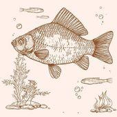 Gravírování ryb — Stock vektor
