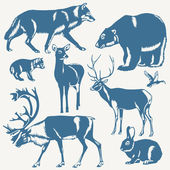 Wild northern animals on a white background — Vecteur