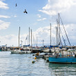 Acre. Marina — Stock Photo