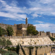 Jerusalem. The Old city wals — Stock Photo