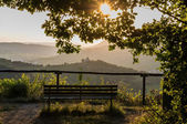 Landscape with the bench — Stock Photo