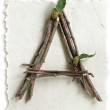 Natural Twig and Stick Letter A — Stock Photo