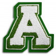 Photograph of School Sports Letter  - Green and White A — Stock Photo