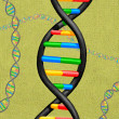 Stock Photo: Illustration of DNA