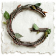 Natural Twig and Stick Letter G — Stock fotografie