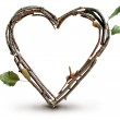 Natural Twig and Stick Heart — Stock Photo #29373867