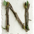 Natural Twig and Stick Letter N — Stock Photo #29375225