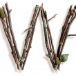 Natural Twig and Stick Letter W — Stok Fotoğraf #29377263
