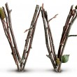 Natural Twig and Stick Letter W — Stock Photo #29377277