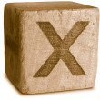 Photograph of Sepia Wooden Block Letter X — Stok fotoğraf