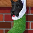 Illustration of Dog In Christmas Sock — Stock Photo