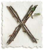 Natural Twig and Stick Letter X — Stock Photo