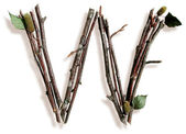 Natural Twig and Stick Letter W — Stock fotografie