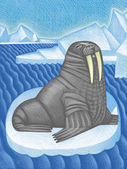 Illustration of Walrus — Stock Photo