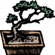 Bonsai Tree — Stock Vector