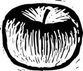 Vector Illustration of Apple — Stock Vector