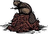Drzeworyt ilustracja bóbr — Wektor stockowy
