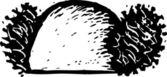 Vector Illustration of Clown Hair — Stock Vector