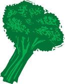 Ilustración de xilografía de brócoli — Vector de stock