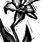 Woodcut illustration of Flower — Stock Vector #29559441